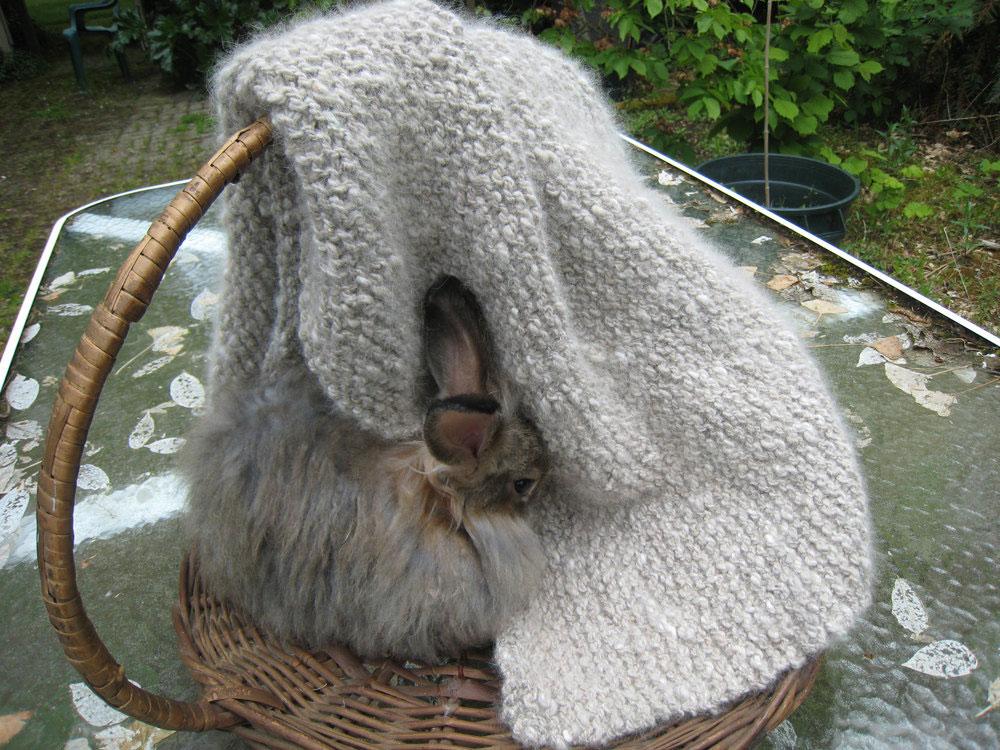 Angora and merino sheep's wool blanket, £157, www.etsy.com