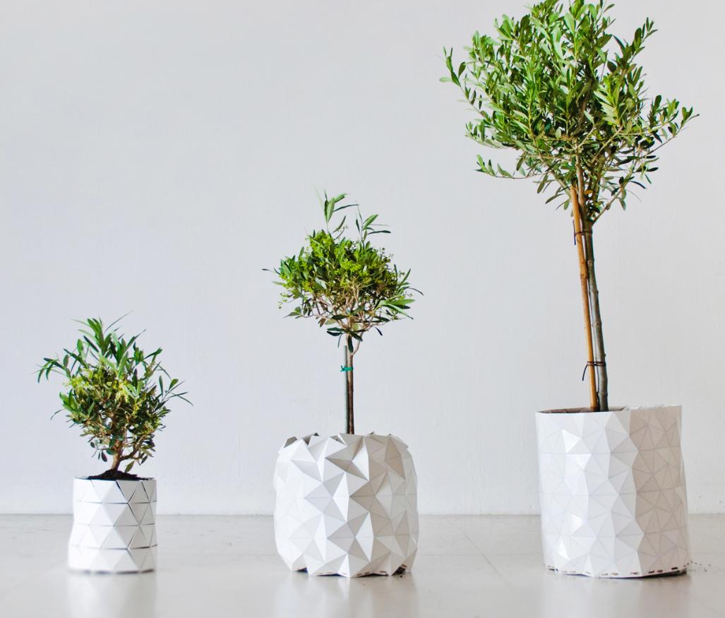 Growth pot by Studio Ayaskan