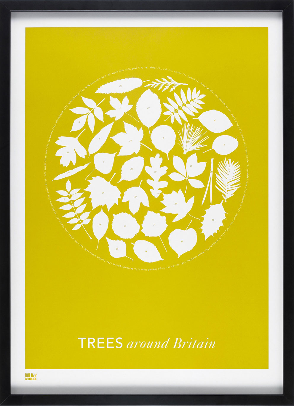Bold & Noble's silk screen graphic prints are printed on 100 per cent recycled paper