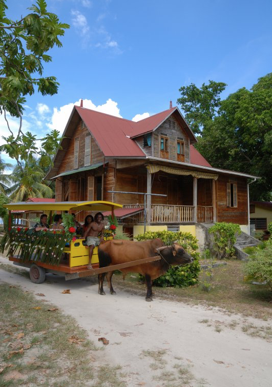 Tour the islands on an old ox cart
