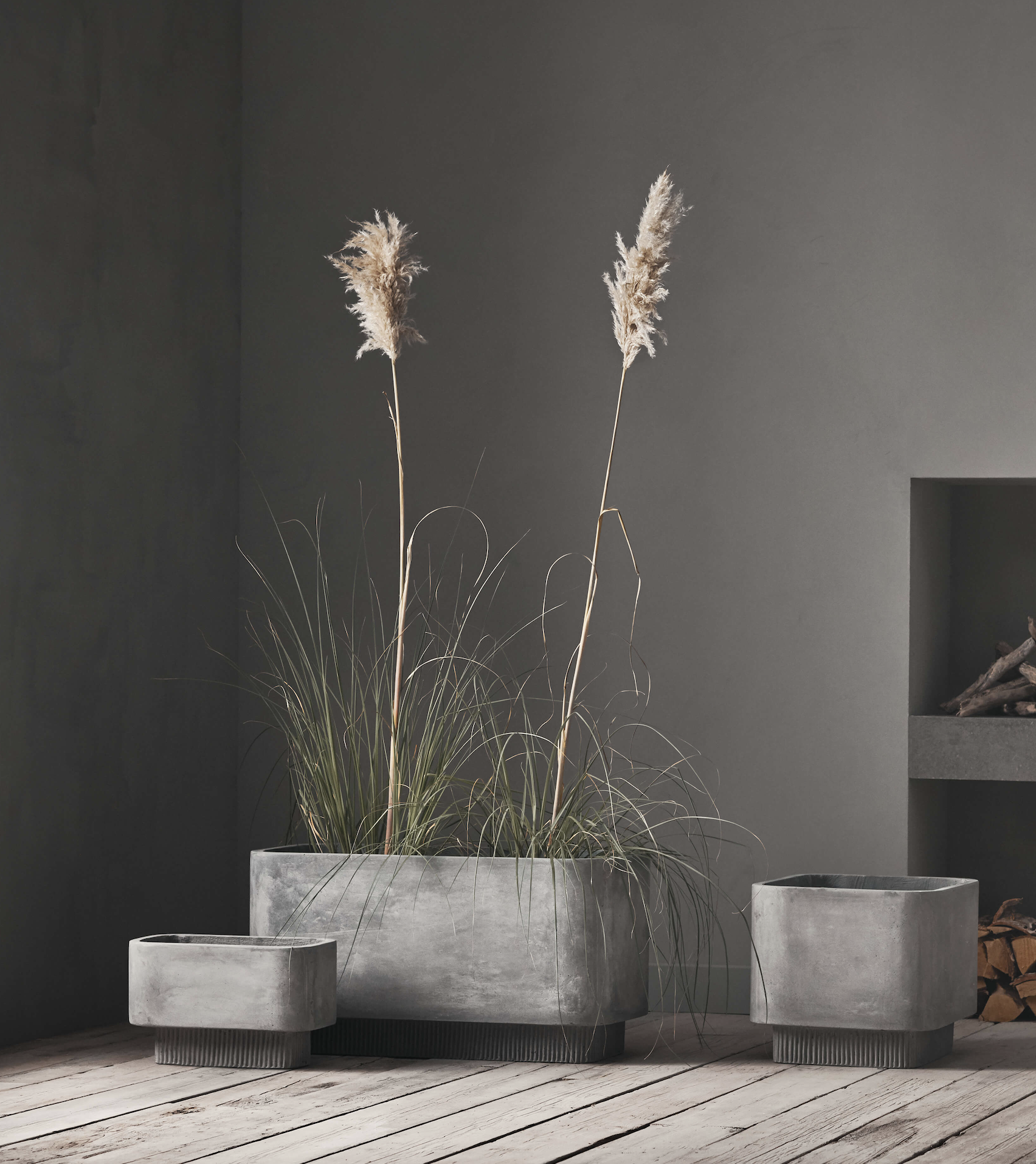 Bolia concrete planters for indoor use