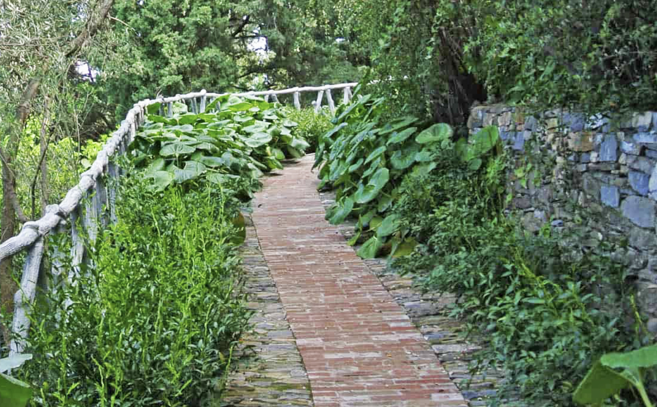 Follow long meandering paths