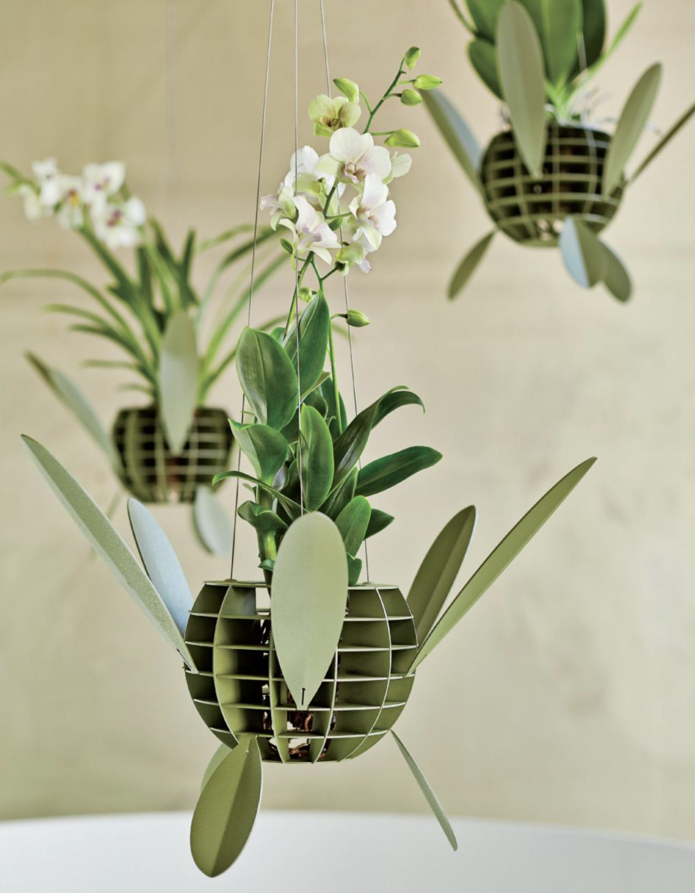 The limited edition Orquid orchid planter by Roderick Vos