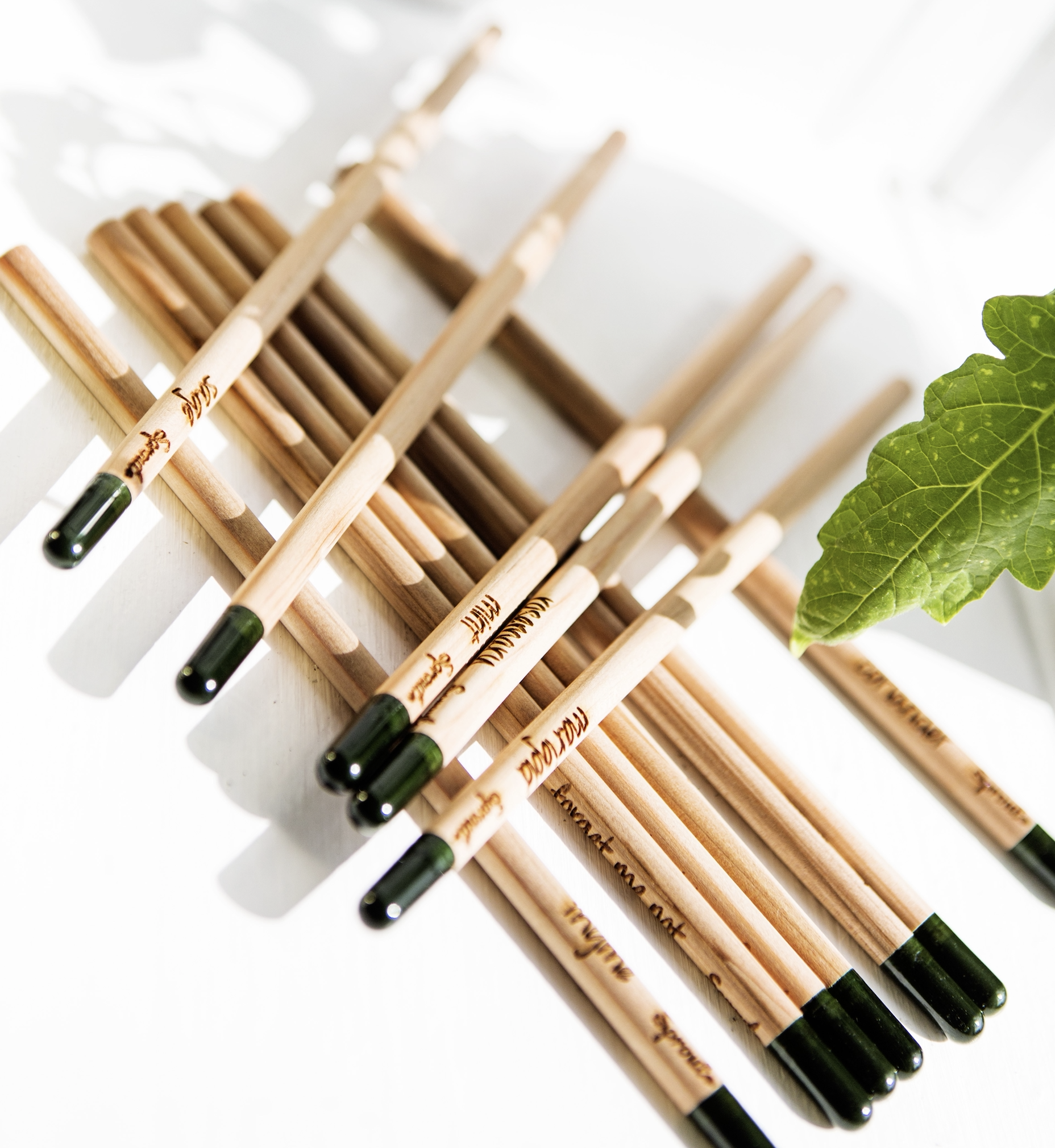 Sprout pencils come in various colours and packaging is customisable