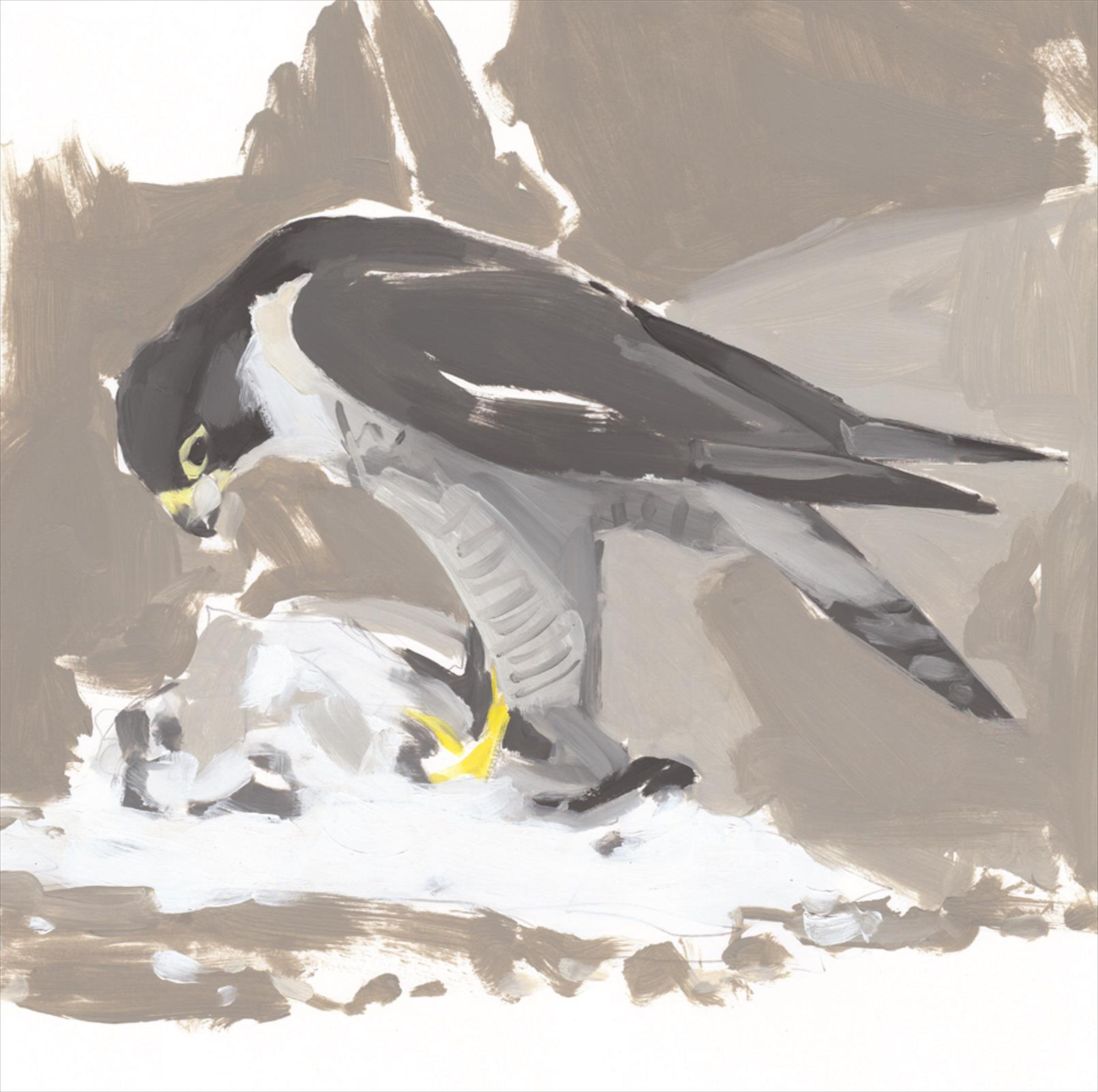Esther Tyson's Falcon on a Pigeon Plucking