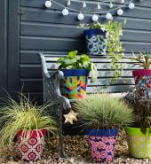 Cheer up the garden in winter with colourful planters from Hum