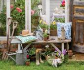 Find out how to improve your garden