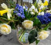 Organically-grown flowers from Cornwall