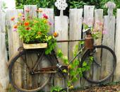 old bicycles make a great vehicle for floral displays in the garden