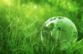 Think greener in 2014
