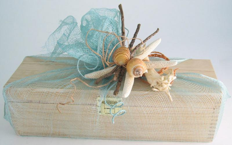 Seashells for gift decoration