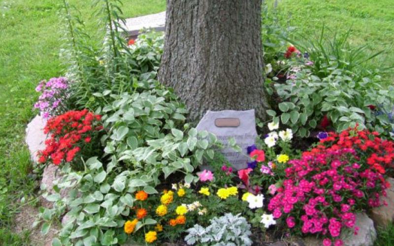 Make a memory garden