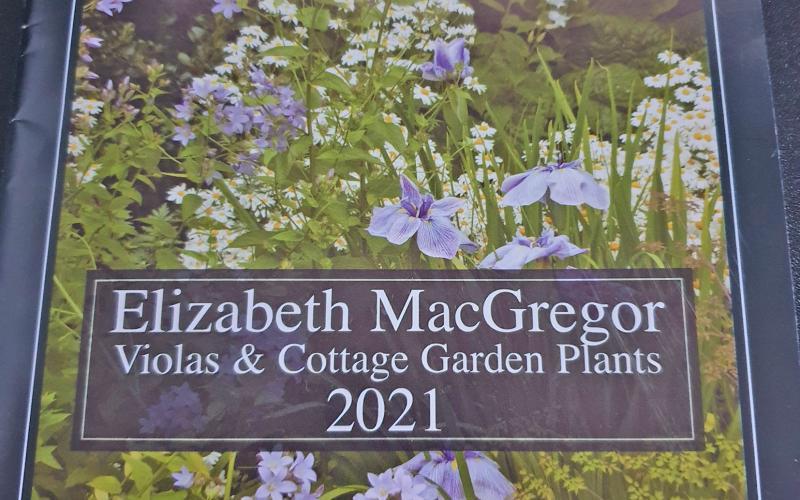Elizabeth Macgregor Nursery