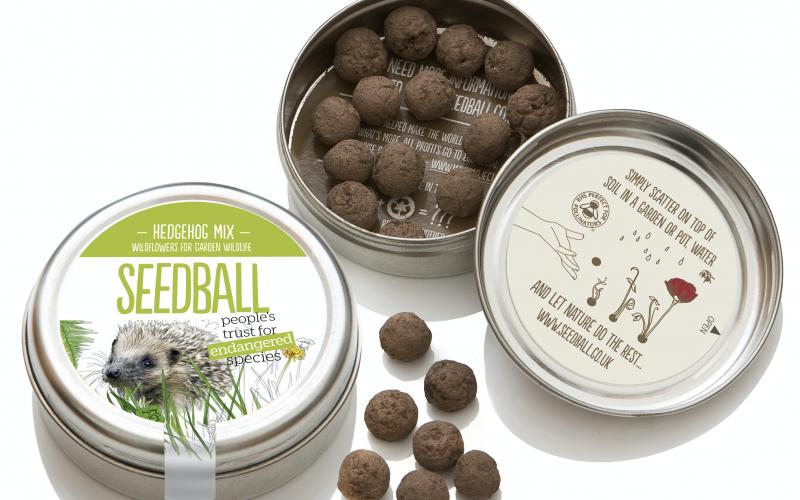 Seedball for hedgehogs