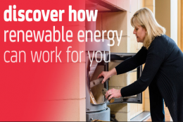 The Energy Saving Trust has detailed information on various forms of renewable energy, as do companies such as Prescient Power