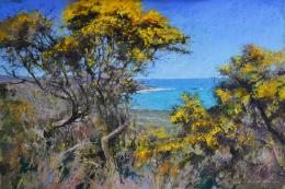 Gorse, St Martin's by Michael Norman