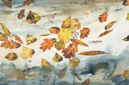 Leaves on the Pond 61x46cm