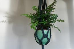 Hang plants anyway..kitchen, bathroom, bedroom ..macrame pot holders look terrific