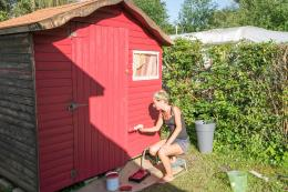 If you have a garden shed and the timber has faded to a nondescript grey, then paint it in warm sunny colour such as Mediterranean red
