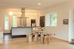Kitchen area of Vita architect-designed house