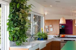 Woolly Pockets offer the most affordable way to build up an indoor green wall