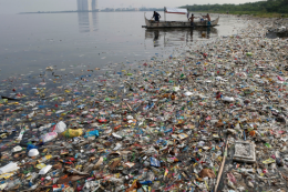 Gross..but a circular economy approach can solve the problem of plastic pollution of our seas and waterways