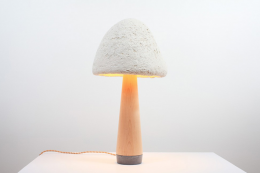 Mush-Lume Light is grown from mushroom mycelium. By Danielle Trofe