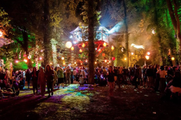 The to party..in wholesome woodland. Timber Festival..for family fun
