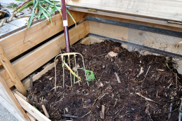 Get composting. Home made compost helps your soil to support strong plant growth