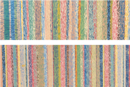 Woodgrain Stripe