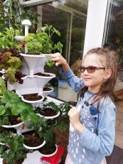 get your kids gardening