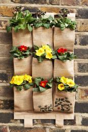 Greenstack wall planters from www.gardenbeet.com cost £19.99