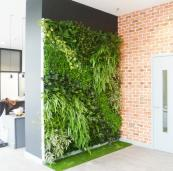 Indoor green wall by Bright Green. POA