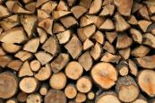 Bio mass boilers make sense for larger properties, and you would need somewhere to store the wood