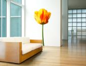 Wall stickers or decals are becoming very popular. Yellow Tulip by US brand Wallflower is printed on biodegradable fabric and you can move it around easily from wall to wall.www.wallfloweronline.com