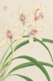 Orchid, Shodo Kawarazaki (1889-1973), original woodblock print, 24x36cms, £180
