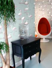 Renowned British wallpaper brand Cole & Son has a lovely Flamingo range in several colours. Roll is 10.5m x53cm, £76