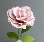 Paper rose, £17.95, www.papertree.co.uk
