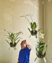 Roderick Vos has designed the Orquid, an aluminium orchid container that means you can suspend plants