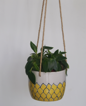 Hanging plant pot from fair trade The Elephant Head, £20. Made in Jaipur. www.theelephanthead.co.uk