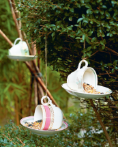 Dainty birds like to eat from bone china...