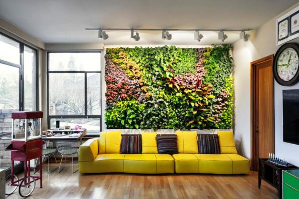 Plants indoors create a healthy environment