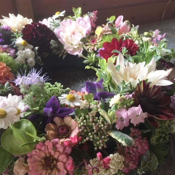Flowers grown in Somerset at Batch Cottage