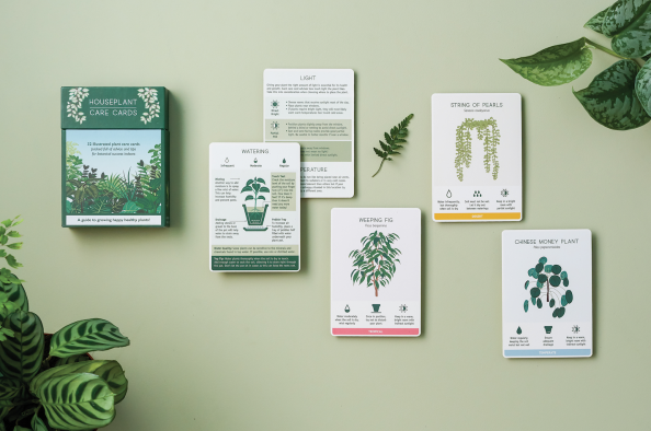 Houseplant Care Cards from Another Studio