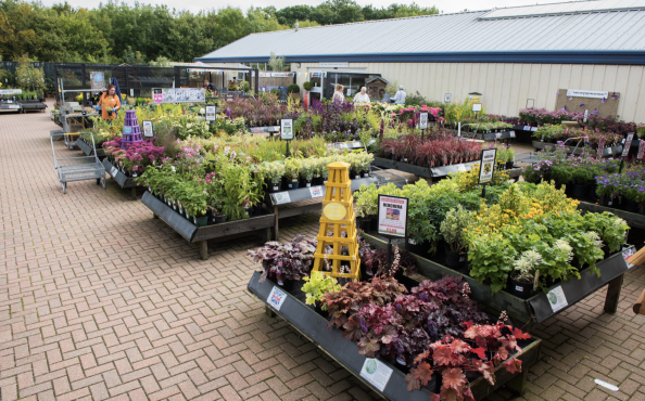 Garden centres are thriving at the moment