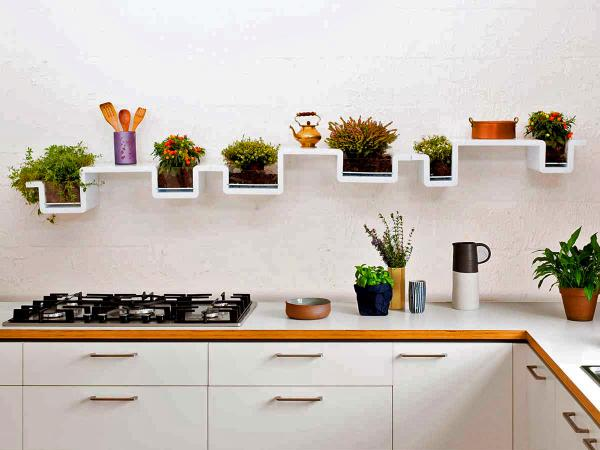 Plantashelf