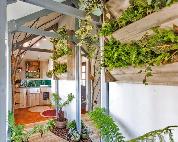 Fill your home with plants
